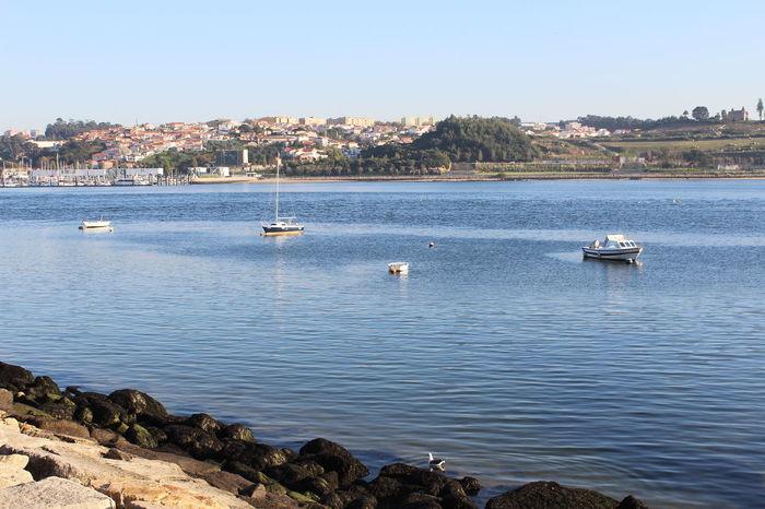 Porto Portugal Beautiful View Nice Day
