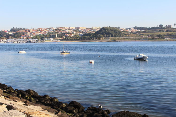 Porto Portugal Beautiful View Nice Day