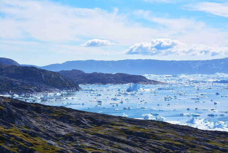 Ilulissat, Greenland, July | UNESCO world heritage site | impressions of Jakobshavn | Disko Bay Kangia Icefjord | huge icebergs in the blue sea on a sunny day | climate change - global warming Beauty In Nature Nature Outdoors Icebergs Iceberg Greenland Climate Change Global Warming UNESCO World Heritage Site Arctic Melting Glacier Natural Beauty Cold Temperature Day Summer Tranquility Nordic Scenery Tranquil Scene Idyllic Water Icefjord Travel Destinations Travel Photography Ice