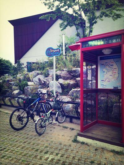 Riding Bike Enjoying Life Bicycle