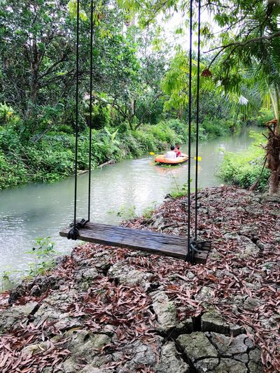 Canal Garden Nature Photography Natural Swing