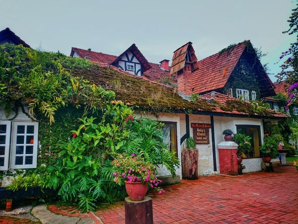 Building Exterior Architecture House Outdoors Built Structure Day No People Plant Cameron Highlands, Malaysia Hobbit House Classic Architecture English Style Nature Smoke House Travel Destination