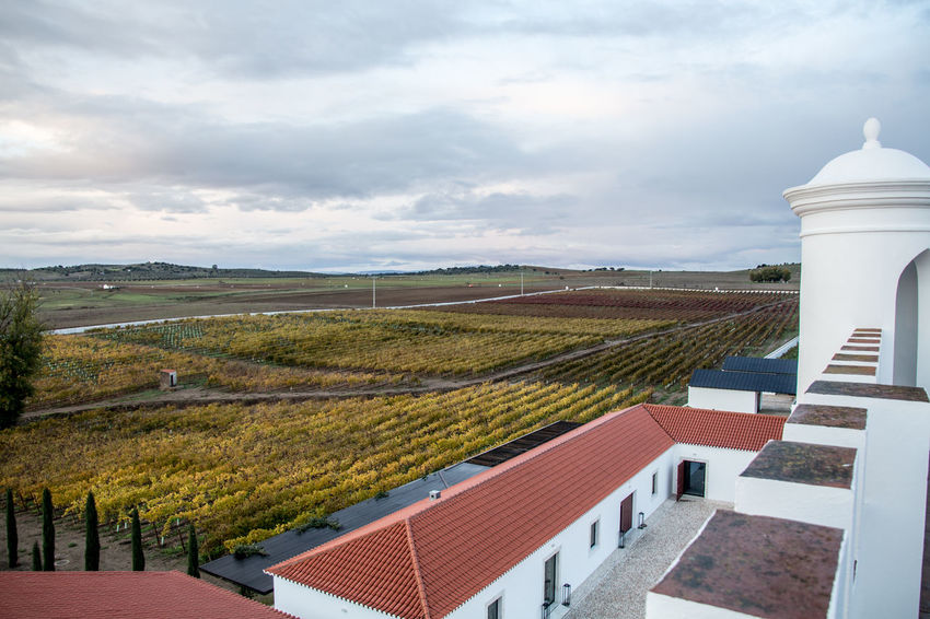 Torre de Palma, Wine Hotel. Monforte, Portugal. Agriculture Architecture Cloud - Sky Day Environmental Conservation No People Outdoors Sky Social Issues