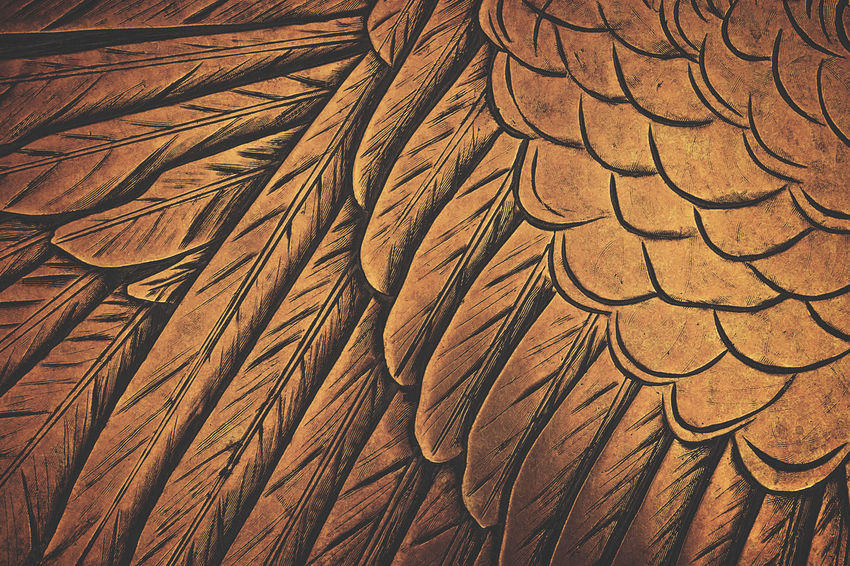 Seamless close up of an American Eagle's wing on a gold plaque. American American Culture American Eagle American Symbol Backgrounds Bird Brass Carved Cast Iron Close-up EyeEmNewHere Feathers Full Frame Gold Golden Metal Metal Plaque Nature No People Patriotism Pattern Seamless Seamless Pattern Textured  Wing