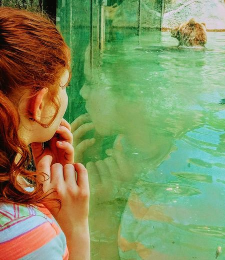 Reflections In The Water Bears