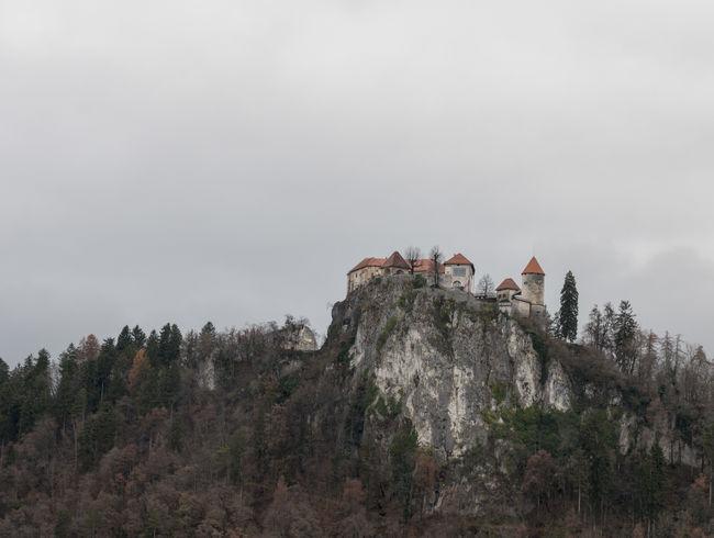 Lake of Bled Bled Bled Castle Bled Lake Slovenia Slovenia Slovenia Scapes Bled, Slovenia Island Isle Landscape Slovenija
