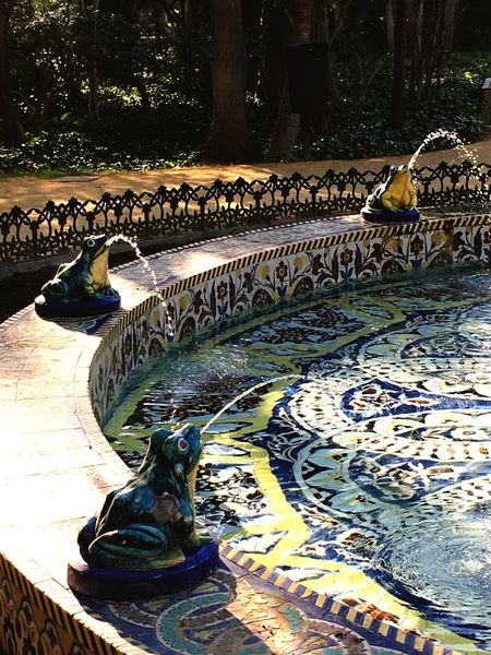 Fountain Frogs Sevilla Water