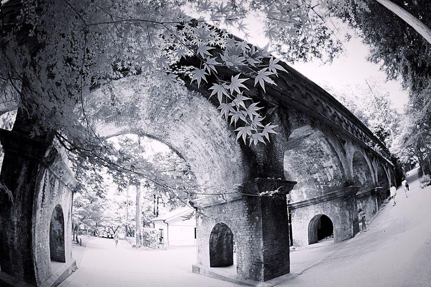 水路閣 EyeEm Best Shots - Black + White Blackandwhite Black And White Monochrome 京都 南禅寺 Japanese Culture Japan Black & White