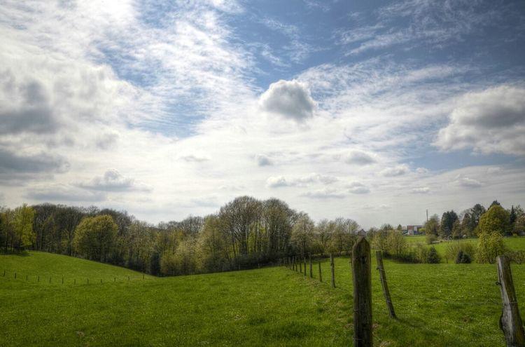 Landscape TheVille Nature