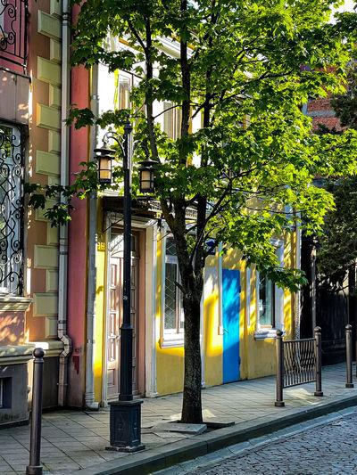 Street light on sidewalk by building in city