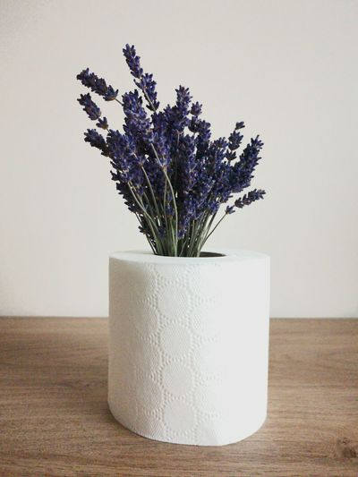 Close-up of flowers in toilet paper roll on table against wall