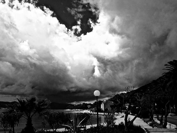 Beauty In Nature Cloud - Sky Day Dramatic Sky Growth Nature No People Outdoors Scenics Sky Storm Cloud Tree