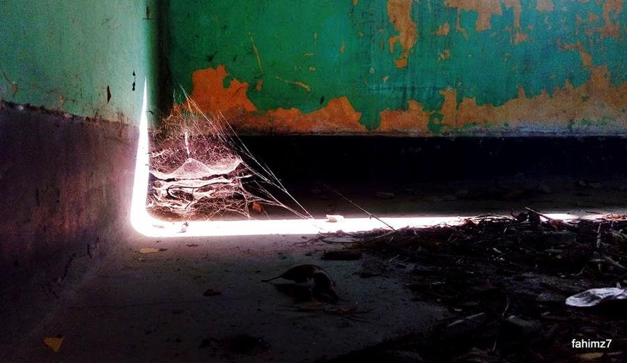 Abandon_seekers Abandoned Abandoned Buildings Abandoned Places Abandoned_junkies Abandonment_issues Eye4photography  EyeEm Best Shots EyeEm Gallery Eyeem Urbex Fahimz7 Hospital Kumi Light Light And Shadow Mobile Urbex Photooftheday Popular Photos Spiderweb TB Hospital Urban Exploration Urbex Urbex Bangladesh Urbex Chittagong Urbexphotography