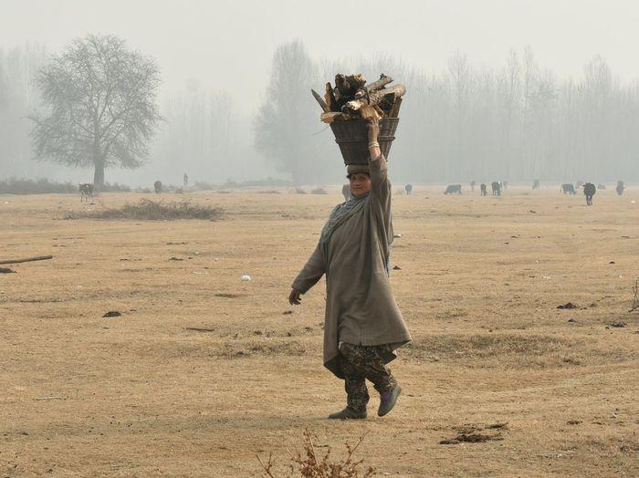A woman carries firewood on her head in the outskirts of Srinagar city Women Kashmir , India Winter Firewood Stack Fog Village Life Srinagar Kashmir Kashmir First Eyeem Photo