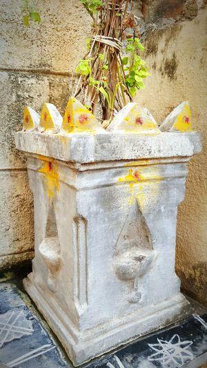 Holy Shrine.. Spiritual Holy Plants Tulasi