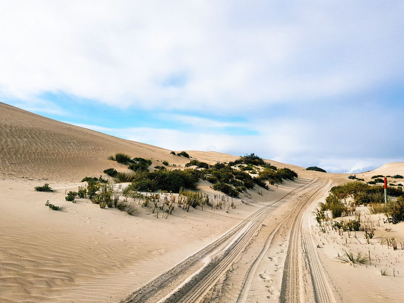 sand dune cycling! Portlincoln South Australia Adelaide, South Australia Port Lincoln Sand Dune Cycling Coffin Bay Fun Sand Dune Desert Arid Climate Sand Heat - Temperature Blue Sky Landscape Cloud - Sky Barren Tire Track