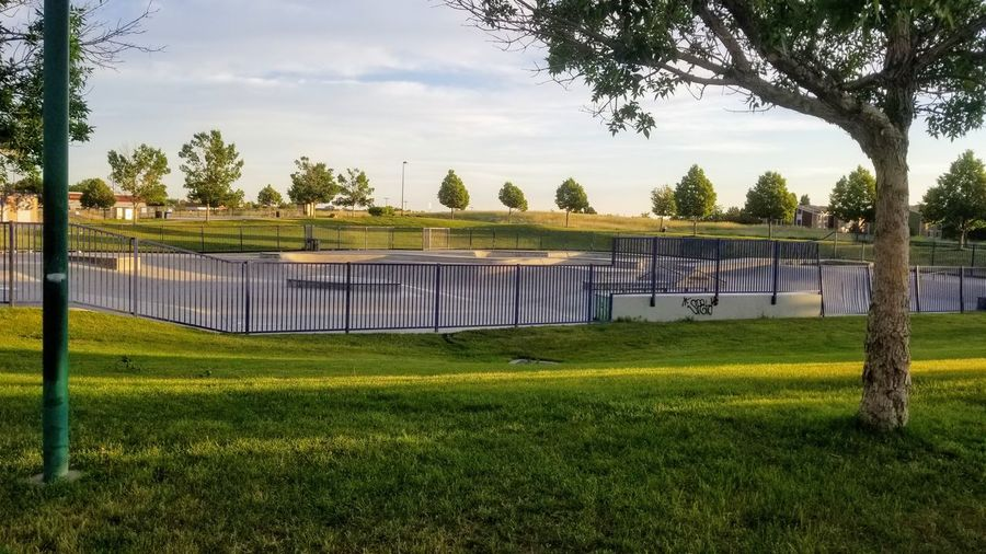 Wheels Park