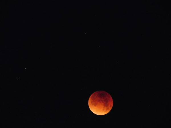 Blood Moon 2018 Astronomy Beauty In Nature Blood Moon Eclipse Bloodmoon Clear Sky Copy Space Eclipse Moon Moon Surface Nature Night No People Outdoors Red Scenics Sky Space Tranquil Scene Tranquility