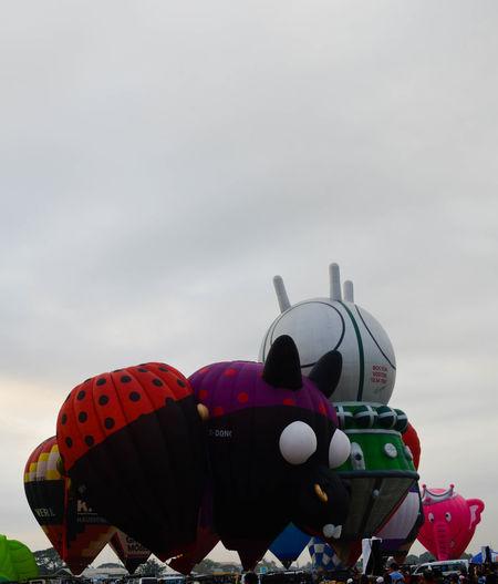 Everything that flies. #phabf22 Hot Air Balloon <3 Hot Air Balloon In The Morning Sun Hot Air Balloons Hot Air Hot Air Balloon Festival Philippines Airplane Clark Pampanga Day Everything That Fl Flying Hot Air Ballons Hot Air Balloon Hot Air Balloon Basket Hot Air Balloon Flight Hot Air Balloon Ride Hot Air Ballooning Hot Air Balloons Festival Hot Air Balloons In The Sky Journey Nature Outdoors Philippine Hot Air Balloon Sky