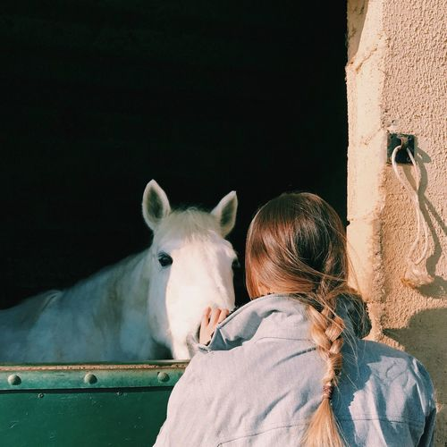 Rear View Of Woman With Braided Hair Touching Horse At Stable