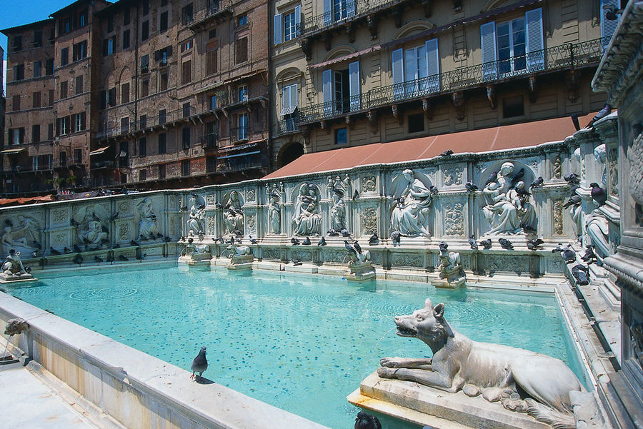 Brunnen auf dem Campo von Siena Brunnenfigur Siena Campo Animal Themes Architecture Brunnen Built Structure Day No People Statue Travel Destinations Water