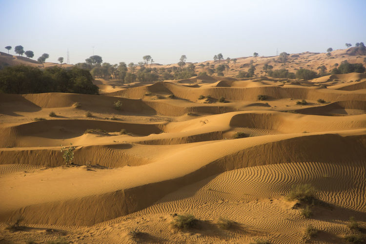 Dunes EyeEm EyeEm Best Shots EyeEm Nature Lover EyeEm Selects EyeEmNewHere Hello World Taking Photos Vacations Arid Climate Beauty In Nature Climate Day Desert Environment Land Landscape Nature No People Non-urban Scene Outdoors Sand Scenics - Nature Tranquil Scene Tranquility