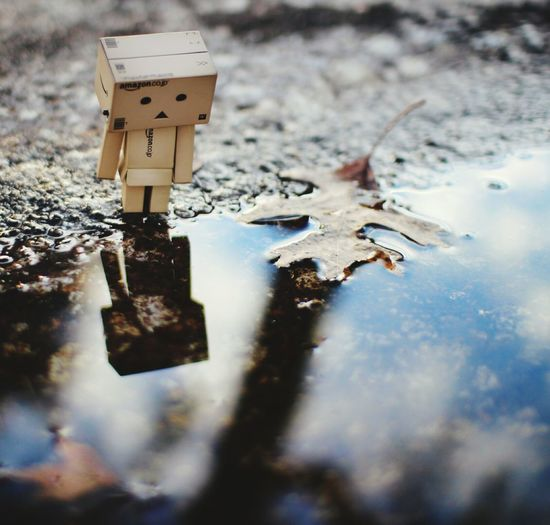 Danbo Feel So Lonely  Spring