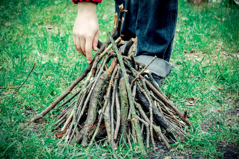 Low section of man holding twigs on grass