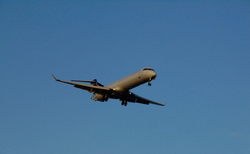 Low angle view of airplane in flight