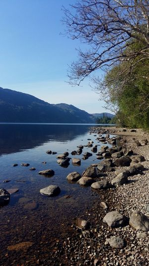 Scotland Shore Loch  Lake Mountain Loch Ness Water Sea Sky Beach Nature Land Tranquility Scenics - Nature Tranquil Scene Beauty In Nature No People Day Non-urban Scene Outdoors Idyllic Sand Sunlight Rock Tree