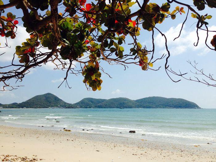 Secret beach in