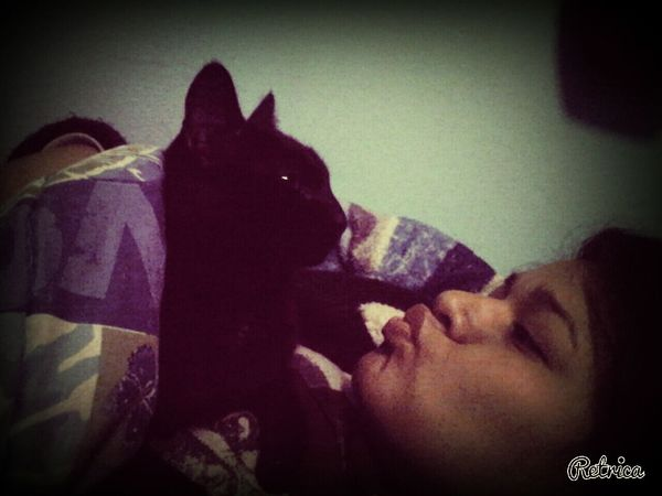 MyLove ♡ Cat Muak T Xtraño =(