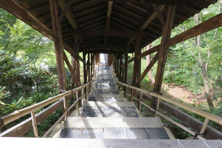 日本 京都 高台寺