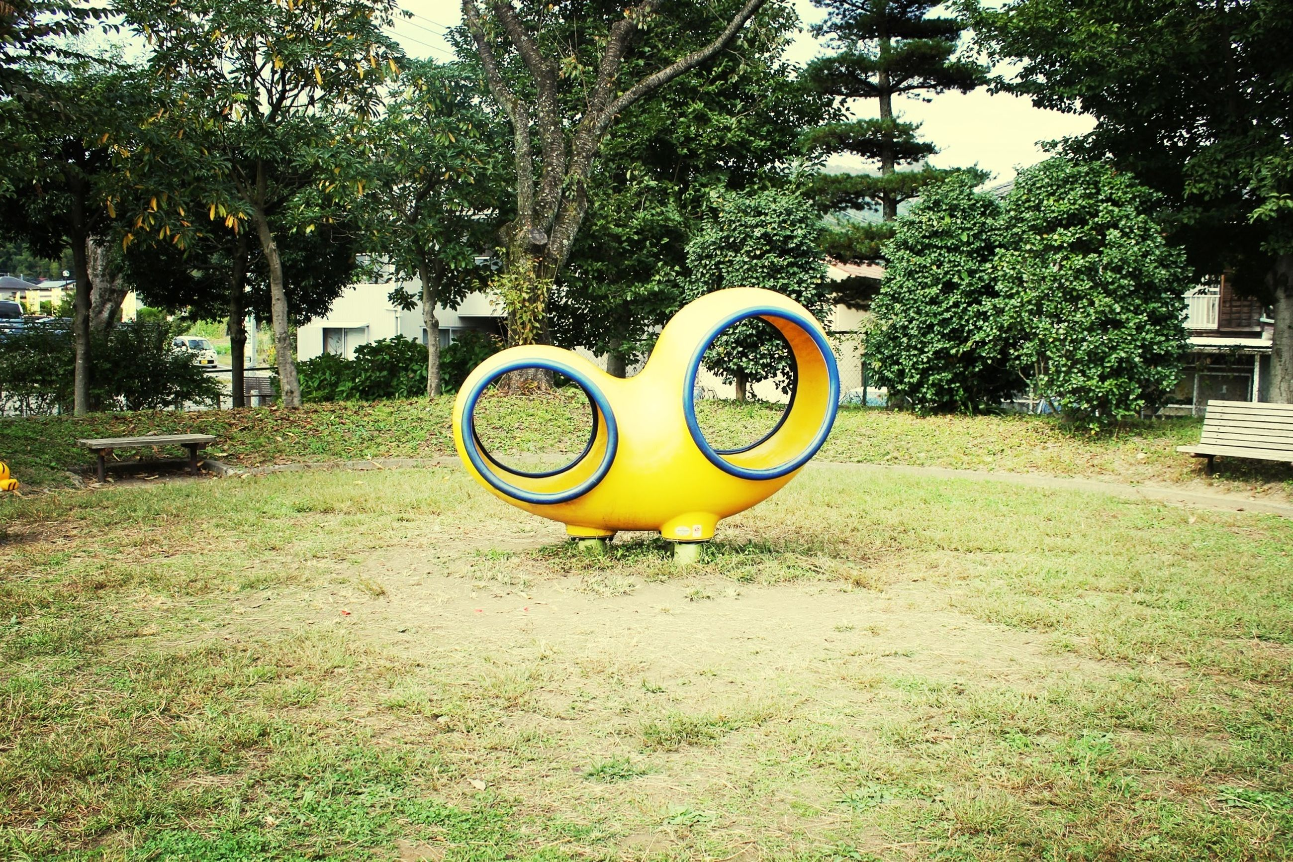 tree, grass, green color, yellow, circle, field, day, growth, outdoors, sunlight, no people, plant, park - man made space, absence, nature, lighting equipment, grassy, sport, playground, green