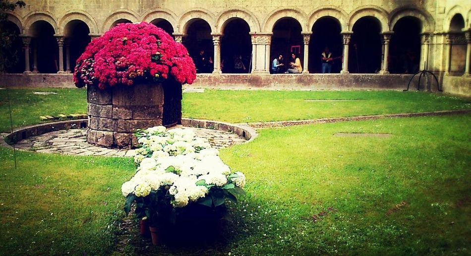 Architecture Flower Temps De Flors