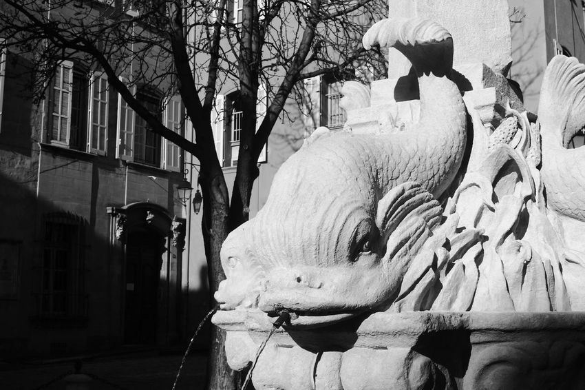 Aix-en-Provence Black And White Dauphin Fontaine Fountain Light And Shadow Provence Water Monochrome Photography