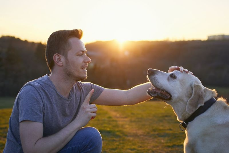 Young man sitting dog looking at sunset