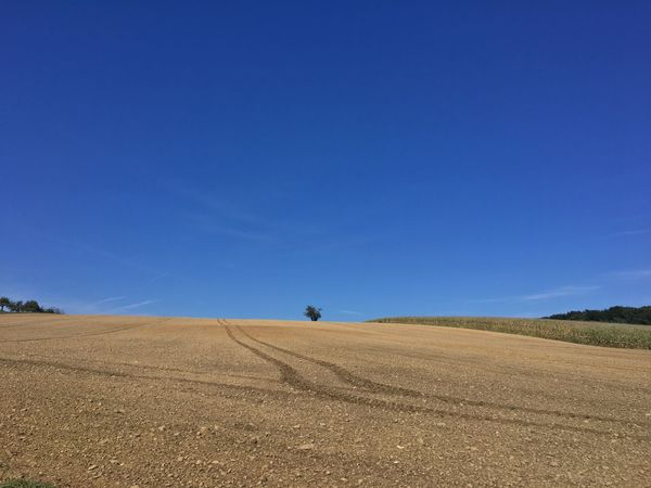 Landscape Blue Field Copy Space Beauty In Nature Nature Scenics Day Outdoors Clear Sky Plough Rural Scene Agriculture No People Sky