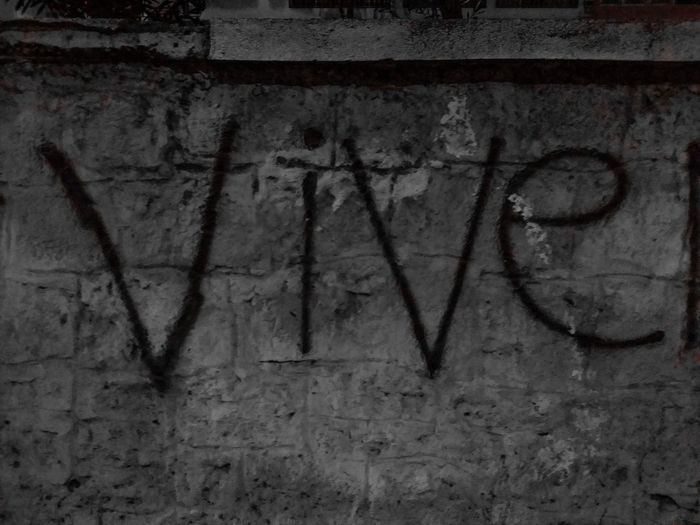 Qui 🤔 Vive Le Roi Long Live The King Graffiti Text Message On The Wall Backgrounds Textured  Rough Communication Built Structure Architecture Nightphotography Shades Of Grey Streetphotography Streetart Expression Open Air Exhibitions MnMl Mnmlsm Minimalism Minimal Minimalistic Minimalmood Minimalist