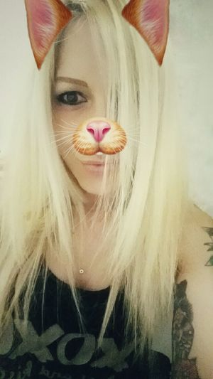 Meow 🐱 Snapchat Filters Cat Lovers Meow🐱 INKEDGIRL Blondiegirl Cherrypopy Catface Pierced Girl Funny Faces