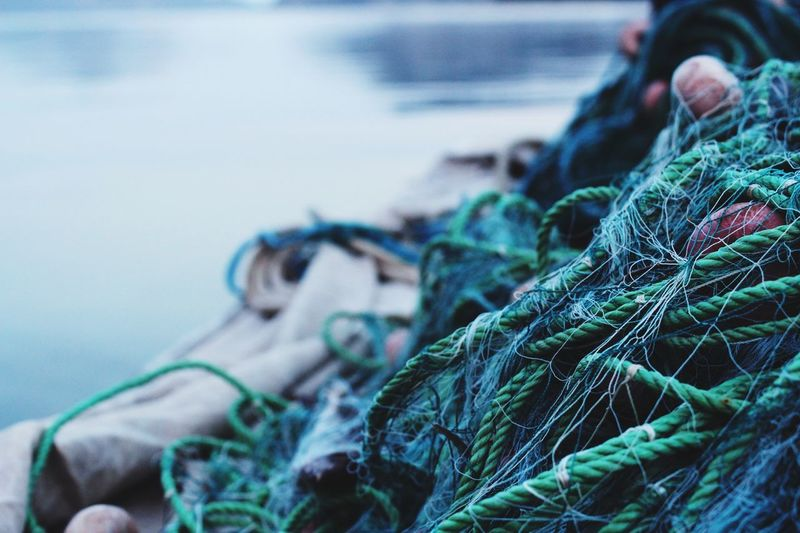 Fishermen net harbour scene Fishing Fishermen Fishing Net Green Color Blue Green Sea Ocean Catch