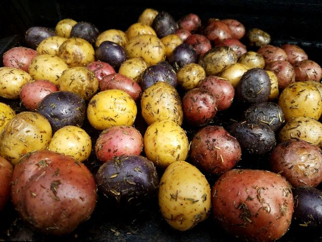 Rosemary roasted potatoes on the grill Rosemary Roasted Herb Easter Grill Food And Drink Food Healthy Eating Freshness Wellbeing Vegetable Abundance Potato No People Yellow Close-up Organic Market Raw Food