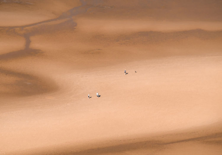 Aerial view of tourists on barren landscape
