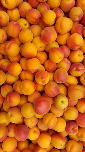 Fruit Fruits Summerfruit Summerfruits Aprikosen Peach Orange Color Lot Of Fruits Nice Fruits Apricot Apricots 43 Golden Moments
