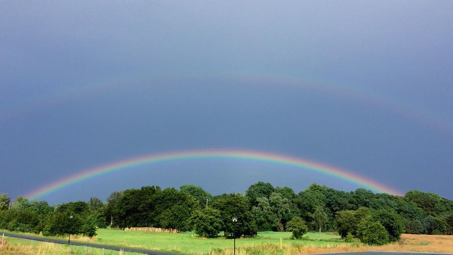 Scenic view of rainbow over trees on field against sky