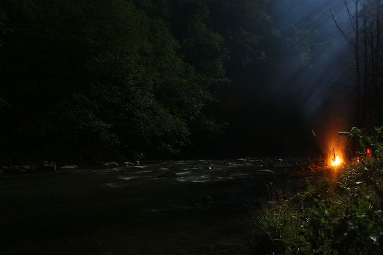 Campfire River Nightshot Romania Transcarpathian Region Protecting Where We Play