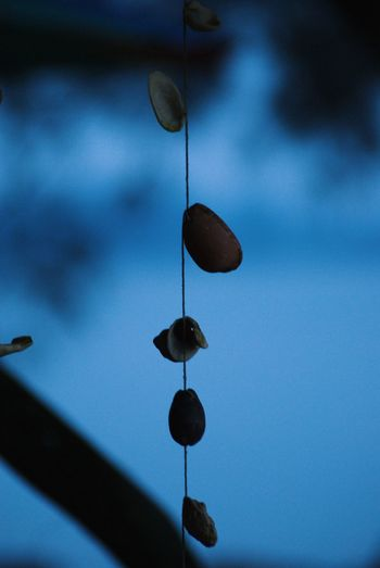Low angle view of water drops hanging against blue sky