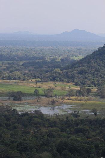 Beauty In Nature Day Fog Forest Green Color Landscape Mihintale Mountain Mountain Range Nature Non-urban Scene Sky Sri Lanka