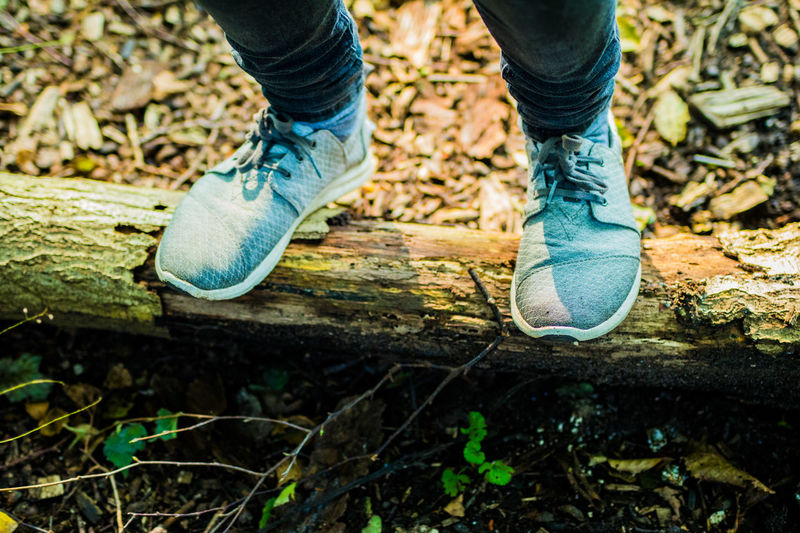 Beautiful hike through autumn forest on grey sneakers Hiking Adult Adults Only Close-up Day Grey Grey Shoes Hike Human Body Part Human Leg Jeans Lifestyles Low Section Men One Man Only One Person Outdoor Photography Outdoors People Real People Shoe Shoes Sneakers Standing Standing On Wood