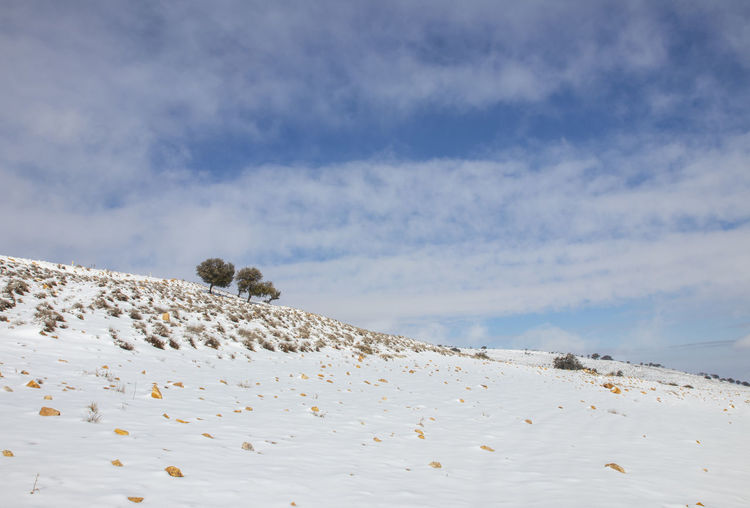 Snow falling on  in ma'an governorate in jordan
